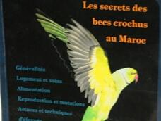 …Un passionné des aras publie un livre